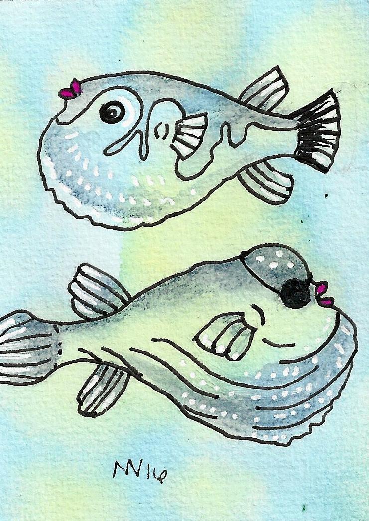 twopuffyfish